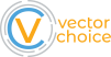 Vector Choice Technology Solutions